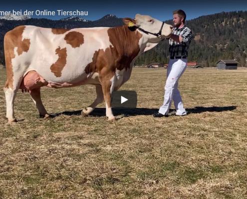 Jugend-vom-Ferlhof-bei-der-Online-Tierschau