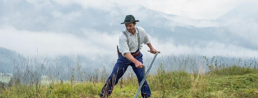Landwirte für nachhaltiges Grünland